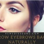 Grow Your Eyebrows Back Naturally
