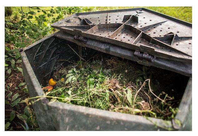 homemade compost for gardening