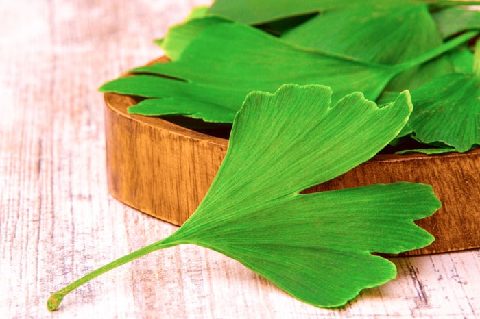 7 Herbs That Helps Increasing Your Productivity Level
