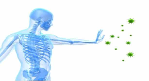 improved immune system