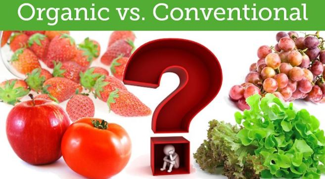 organic vs conventional food